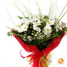 Bouquet Daisy's